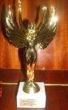 Победители конкурсов: 2013-2014 учебный год